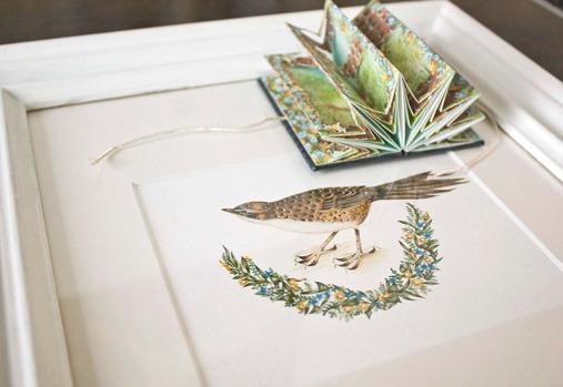 Chatham Fernbird & Book